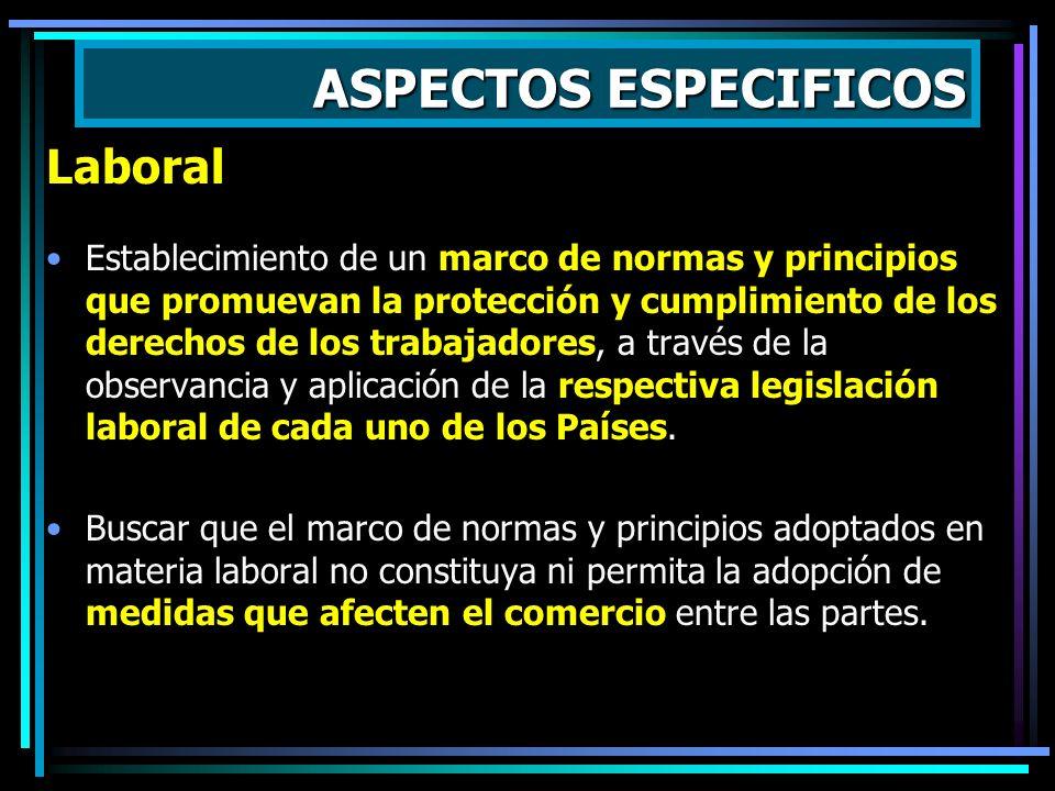 ASPECTOS ESPECIFICOS Propiedad intelectual Establecimiento de disciplinas que aseguren una adecuada y efectiva protección de los derechos de propiedad