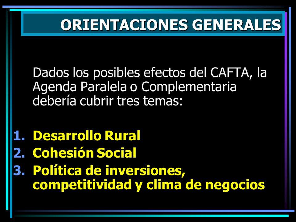 La Agenda Paralela debe concentrarse a lo realmente importante, tomando en cuenta: Capital político Recursos financieros Capacidad administrativa del