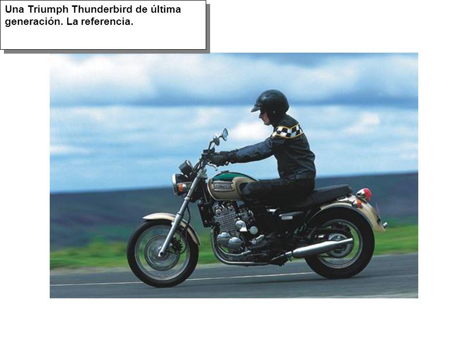 Una Triumph Thunderbird de última generación. La referencia.