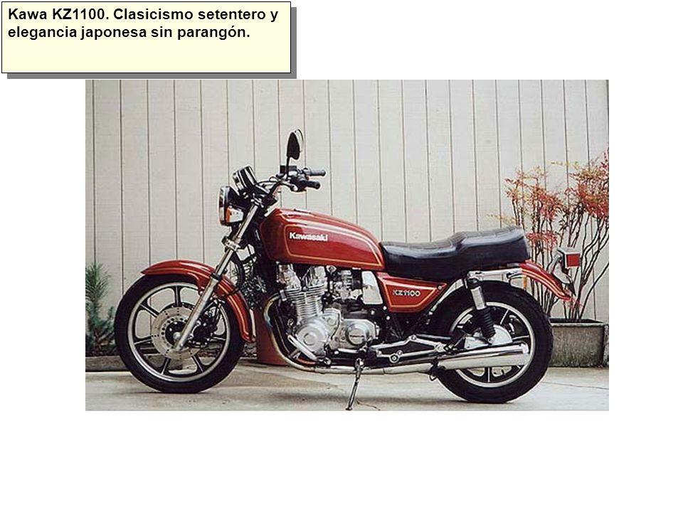 Una Suzuki Intruder.Es una de las pocas custom por las que siento debilidad.