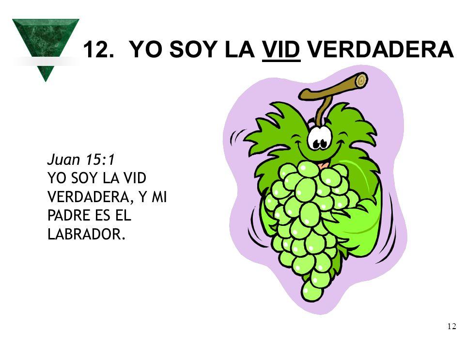 12 12.YO SOY LA VID VERDADERA Juan 15:1 YO SOY LA VID VERDADERA, Y MI PADRE ES EL LABRADOR.