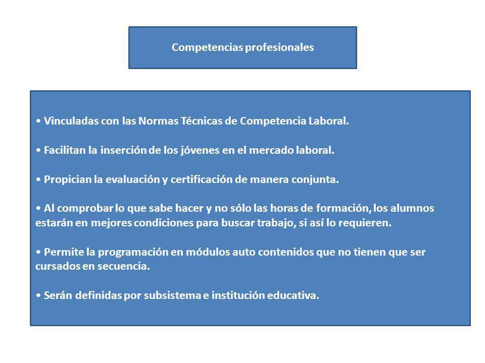Competencias profesionales Vinculadas con las Normas Técnicas de Competencia Laboral. Facilitan la inserción de los jóvenes en el mercado laboral. Pro