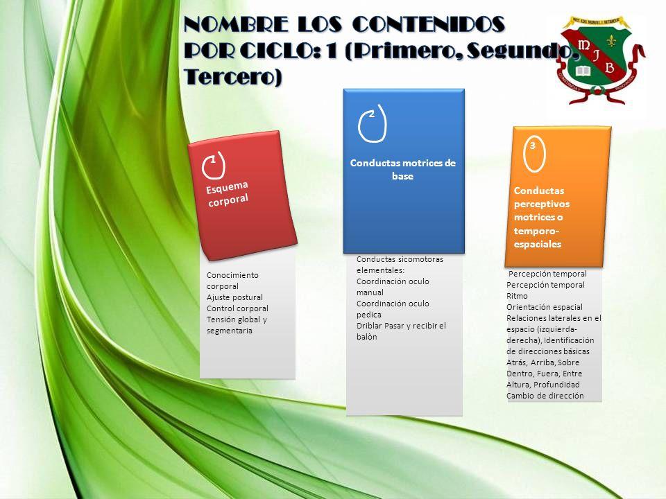 1 Esquema corporal Conocimiento corporal Ajuste postural Control corporal Tensión global y segmentaria 2 Conductas motrices de base Conductas sicomoto