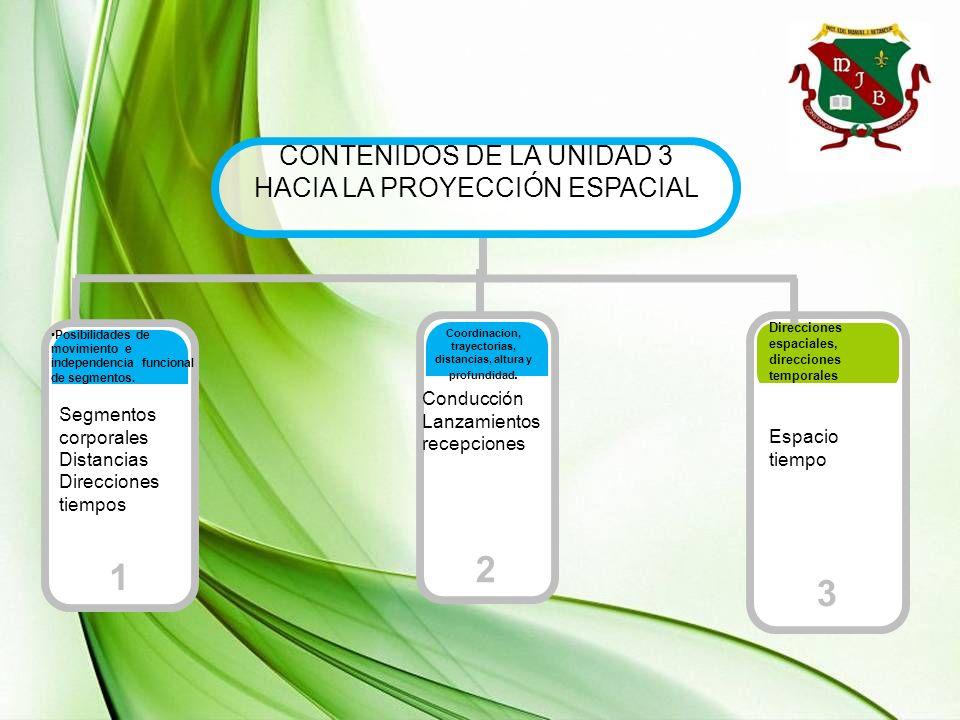 1 3 CONTENIDOS DE LA UNIDAD 3 HACIA LA PROYECCIÓN ESPACIAL 2 Coordinacion, trayectorias, distancias, altura y profundidad. Posibilidades de movimiento