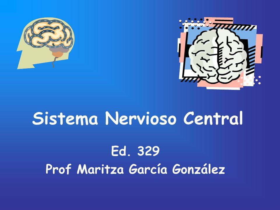Sistema Nervioso Central Ed. 329 Prof Maritza García González