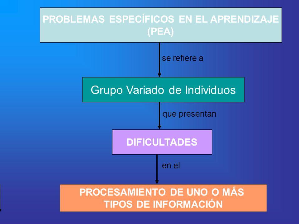 PROBLEMAS ESPECÍFICOS EN EL APRENDIZAJE (PEA) Grupo Variado de Individuos DIFICULTADES PROCESAMIENTO DE UNO O MÁS TIPOS DE INFORMACIÓN se refiere a qu