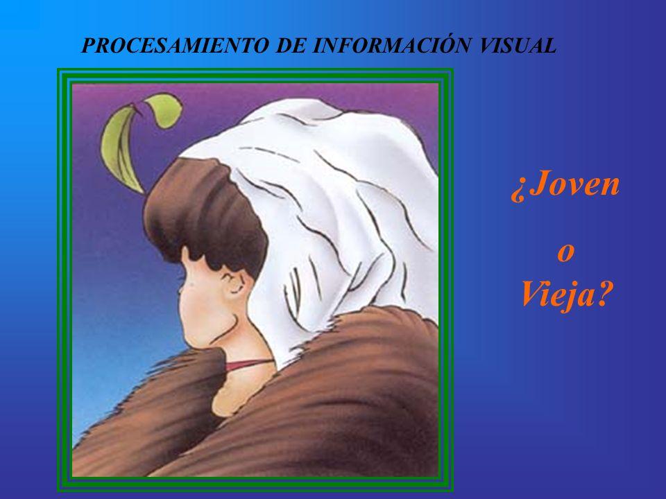 PROCESAMIENTO DE INFORMACIÓN VISUAL ¿Joven o Vieja?