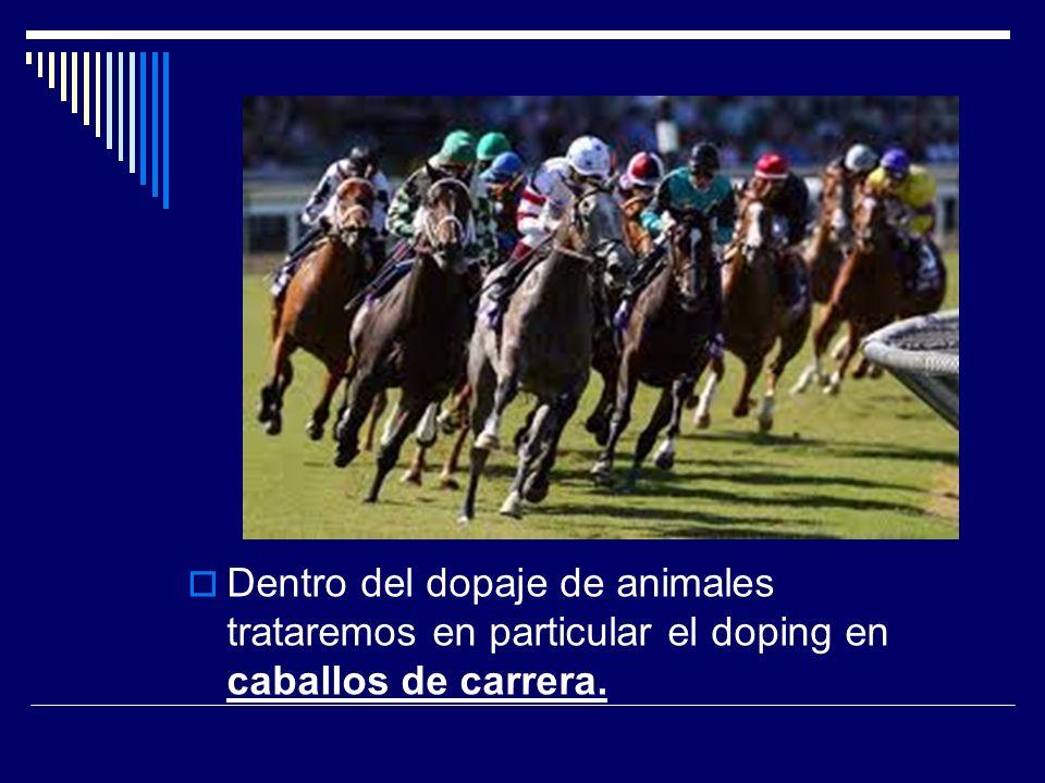 INDICE 1.INTRODUCCIÓN 2. PARTICULARIDADES DEL DOPING EN CABALLOS 3.