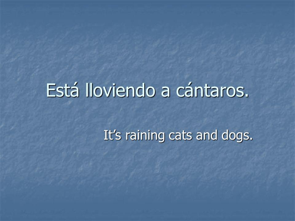 Está lloviendo a cántaros. Its raining cats and dogs.