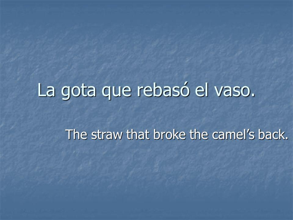 La gota que rebasó el vaso. The straw that broke the camels back.