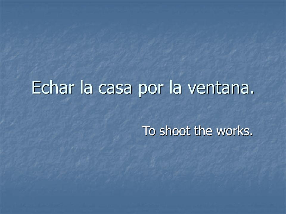 Echar la casa por la ventana. To shoot the works.