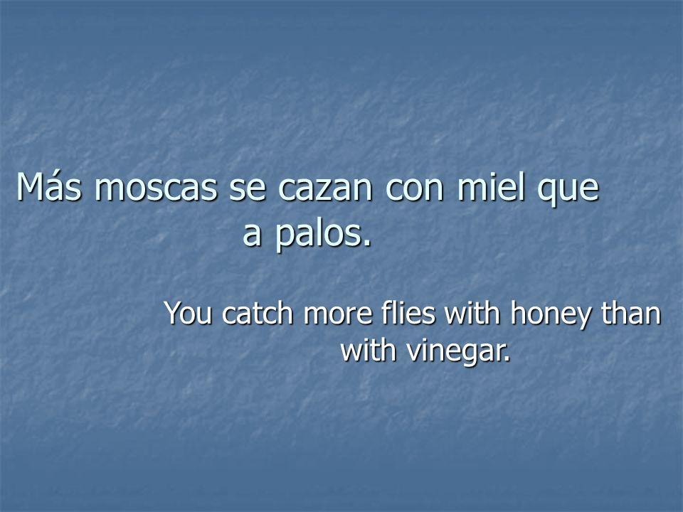 Más moscas se cazan con miel que a palos. You catch more flies with honey than with vinegar.