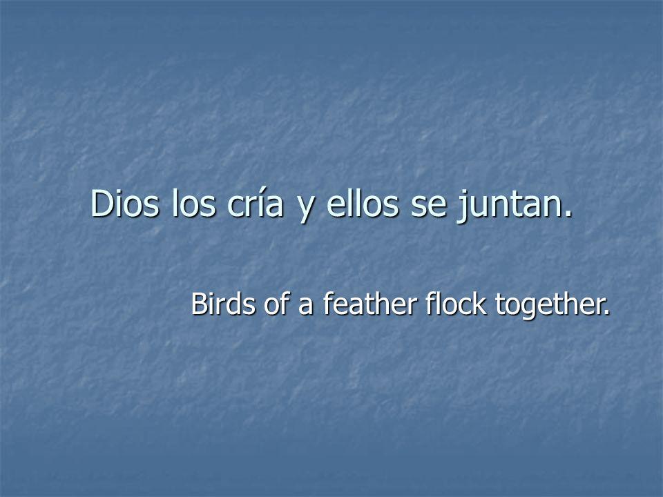 Dios los cría y ellos se juntan. Birds of a feather flock together.