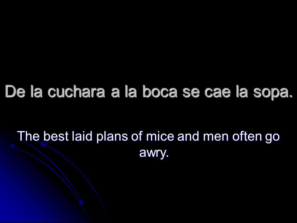 De la cuchara a la boca se cae la sopa. The best laid plans of mice and men often go awry.