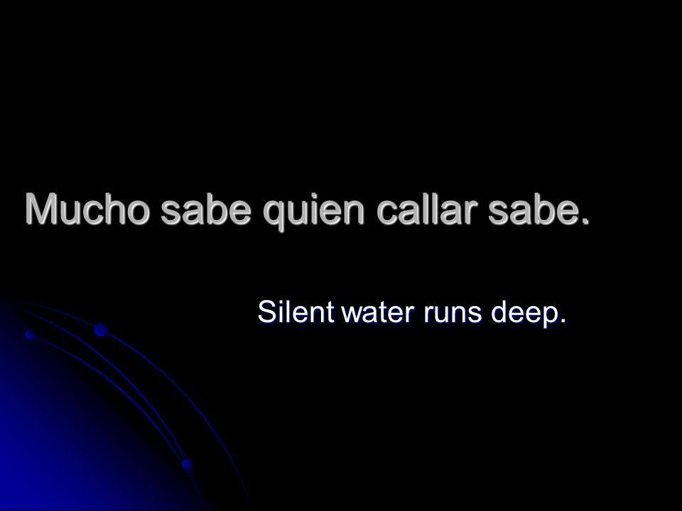 Mucho sabe quien callar sabe. Silent water runs deep.