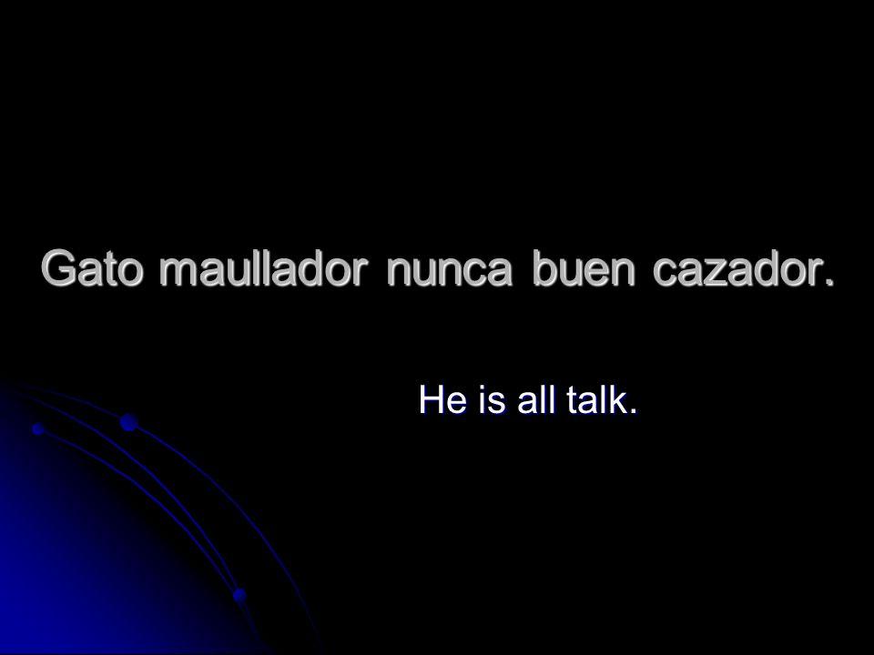Gato maullador nunca buen cazador. He is all talk.