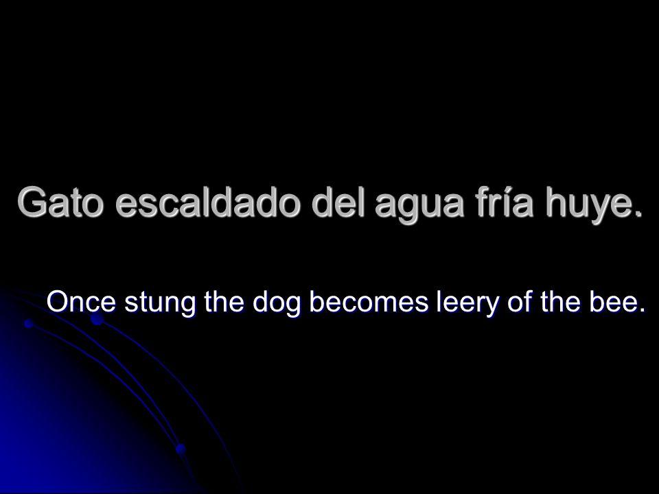 Gato escaldado del agua fría huye. Once stung the dog becomes leery of the bee.