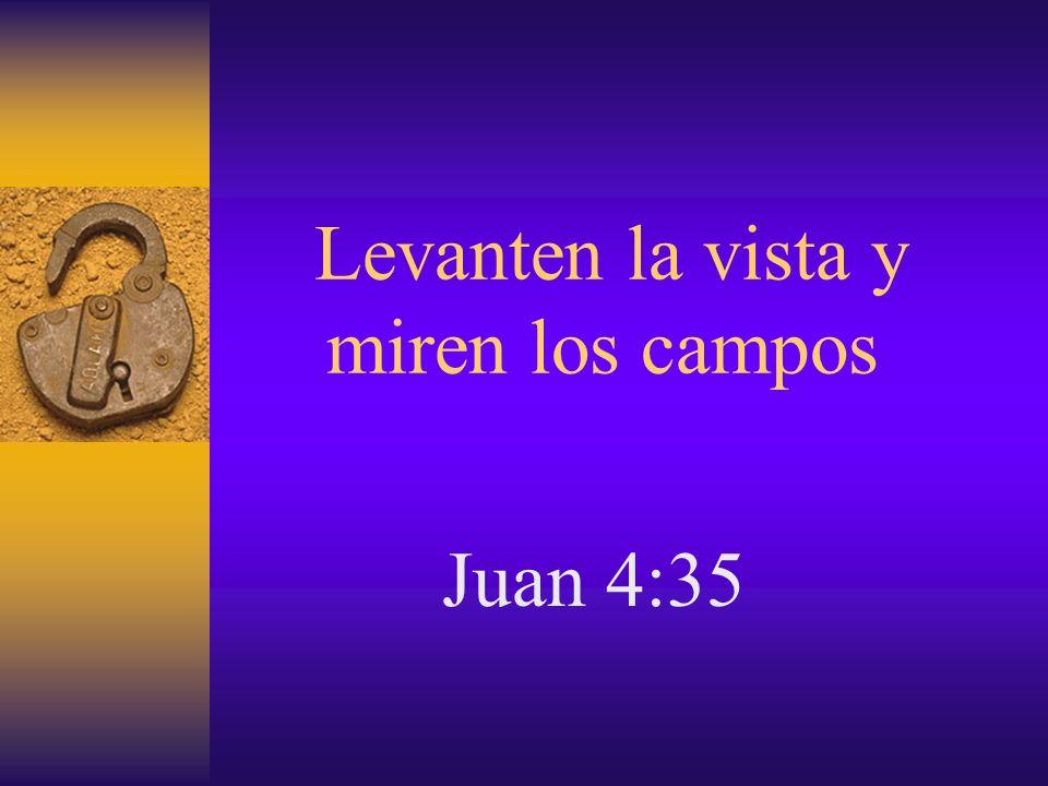 Levanten la vista y miren los campos Juan 4:35