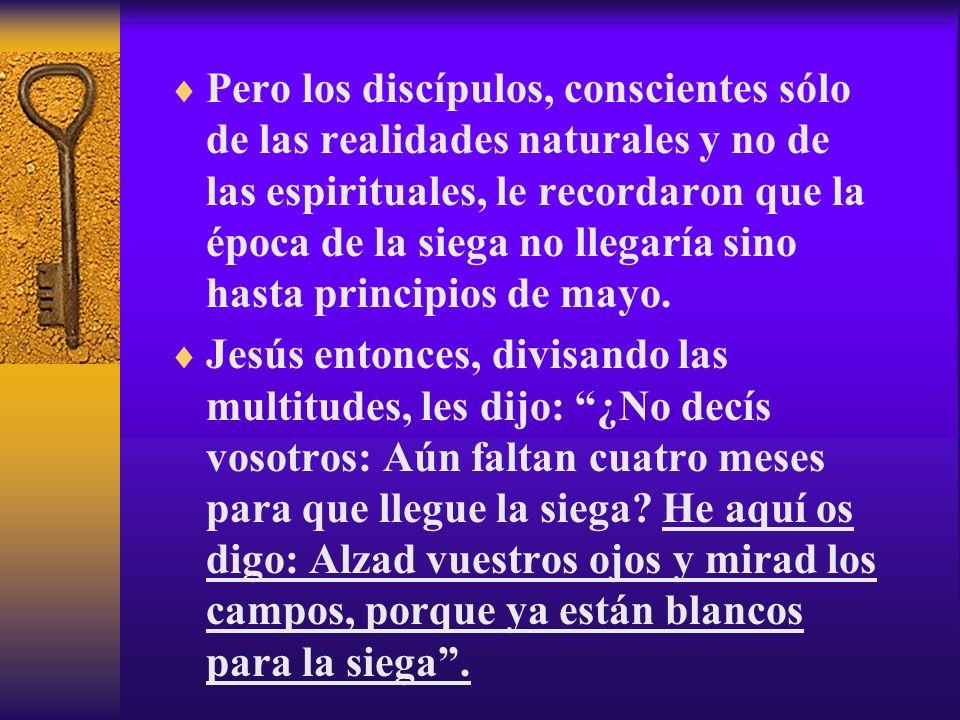 Pero los discípulos, conscientes sólo de las realidades naturales y no de las espirituales, le recordaron que la época de la siega no llegaría sino ha