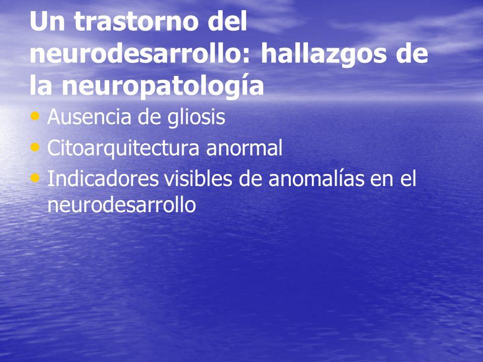 Un trastorno del neurodesarrollo: hallazgos de la neuropatología Ausencia de gliosis Citoarquitectura anormal Indicadores visibles de anomalías en el