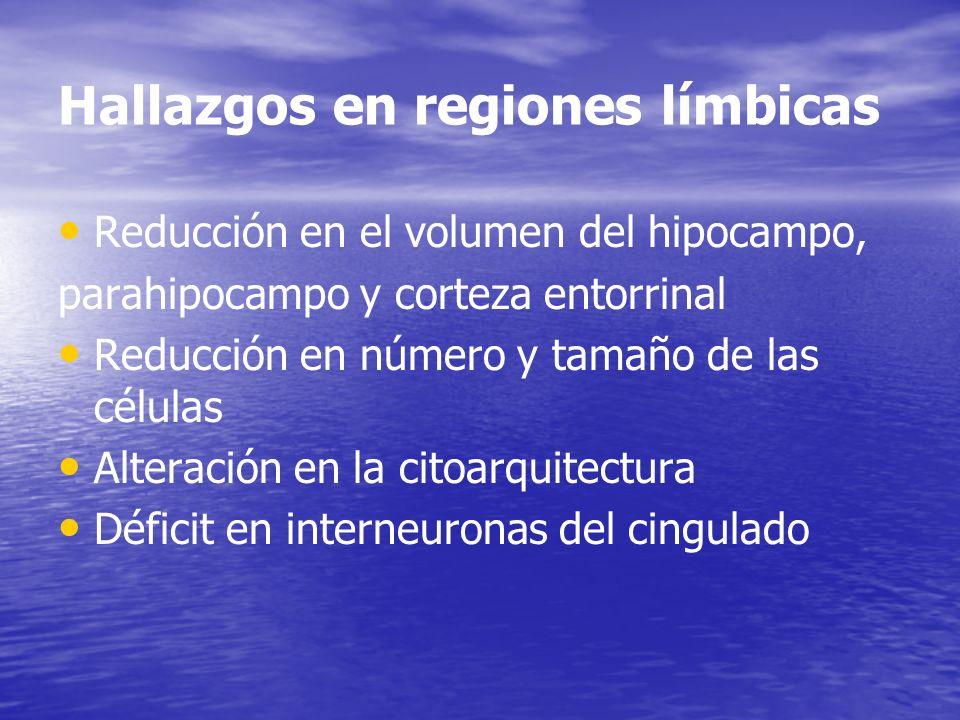 Hallazgos en regiones límbicas Reducción en el volumen del hipocampo, parahipocampo y corteza entorrinal Reducción en número y tamaño de las células A
