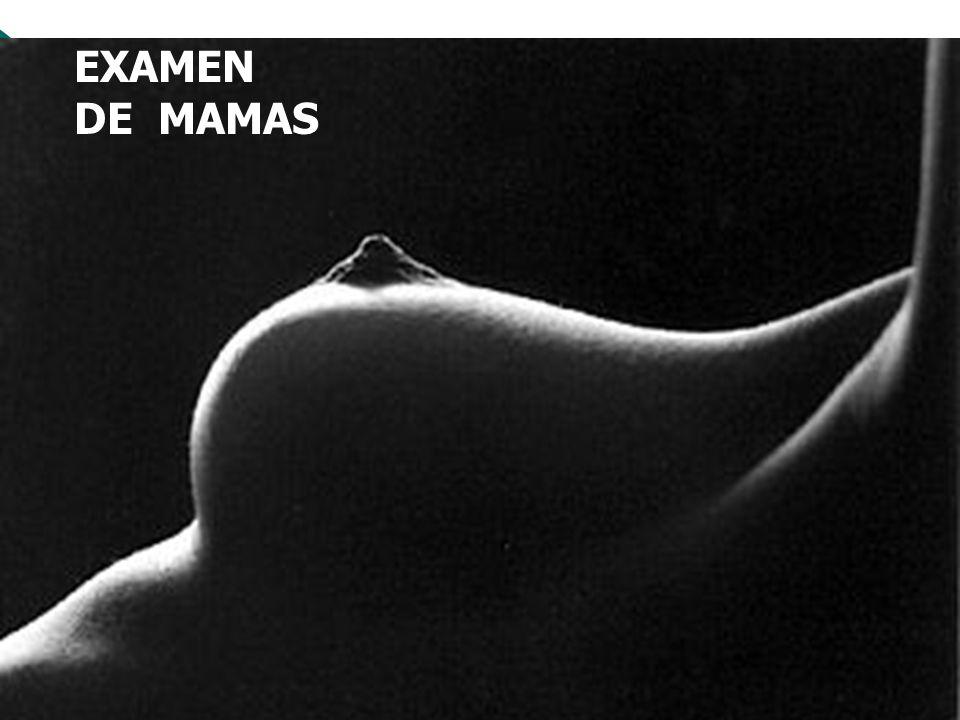 EXAMEN FISICO DE MAMAS ANATOMIA Las glándulas mamarias situadas en la pared anterior del tórax Se extienden: Verticalmente segunda a la sexta costilla.