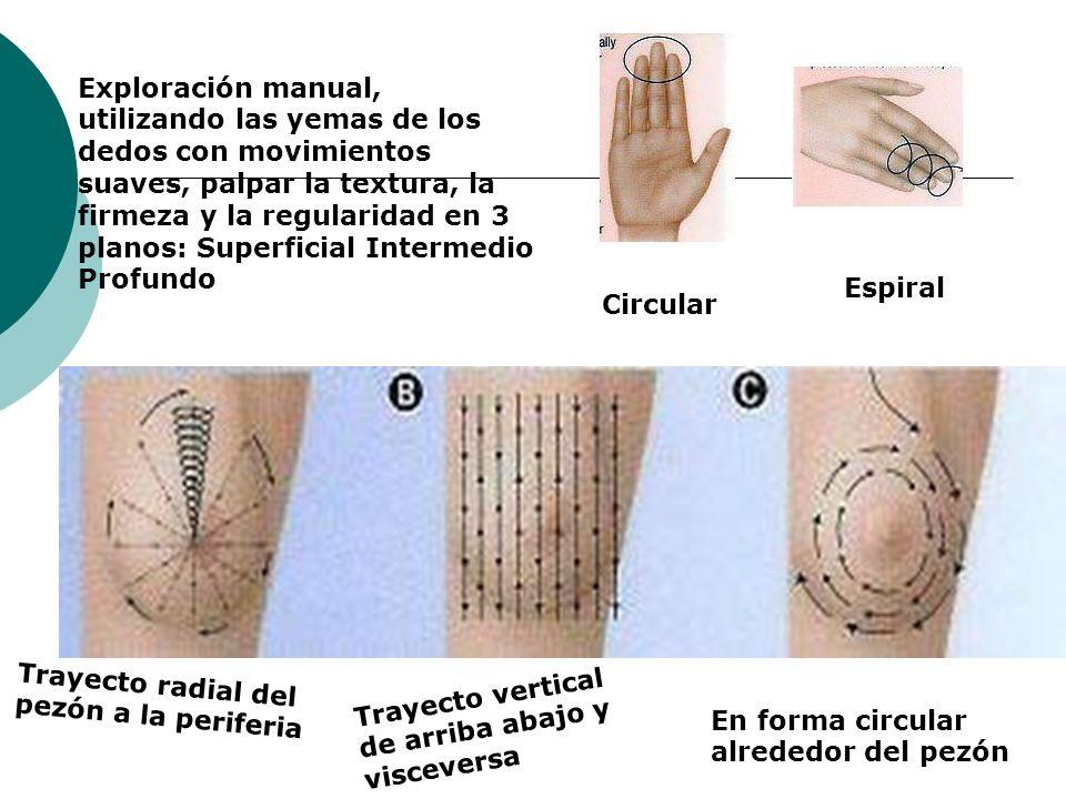 Exploración manual, utilizando las yemas de los dedos con movimientos suaves, palpar la textura, la firmeza y la regularidad en 3 planos: Superficial