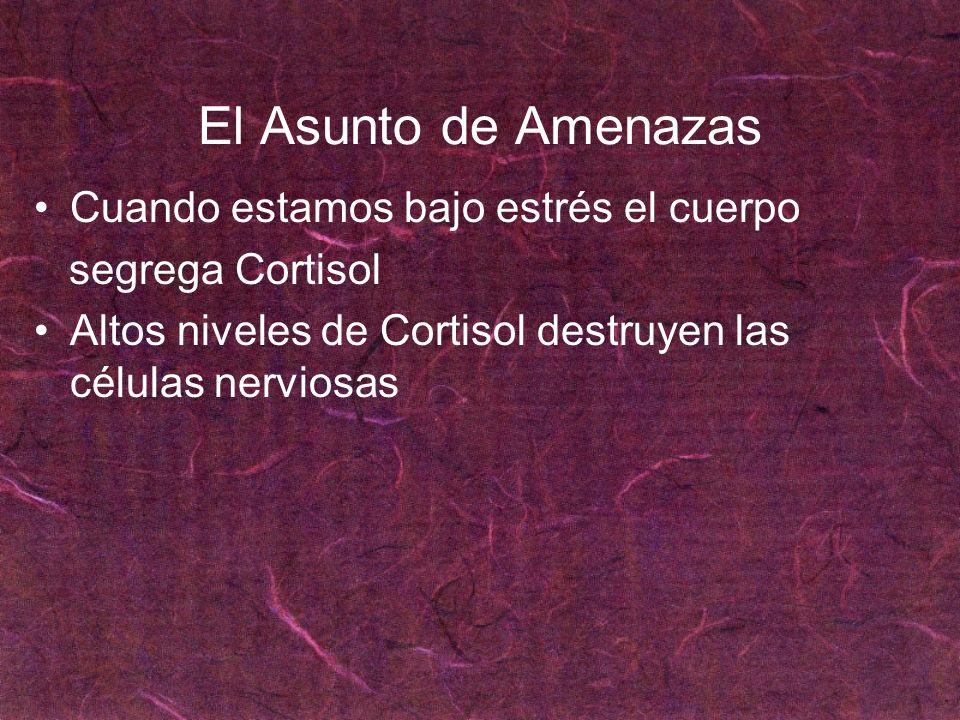 El Asunto de Amenazas Cuando estamos bajo estrés el cuerpo segrega Cortisol Altos niveles de Cortisol destruyen las células nerviosas