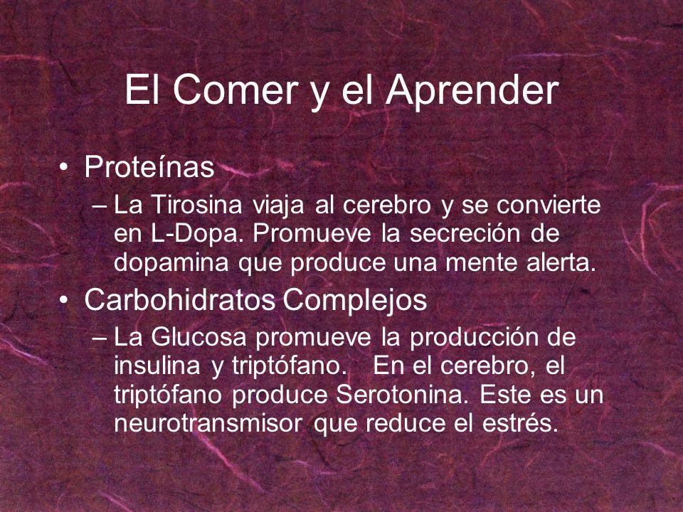 El Comer y el Aprender Proteínas –La Tirosina viaja al cerebro y se convierte en L-Dopa. Promueve la secreción de dopamina que produce una mente alert