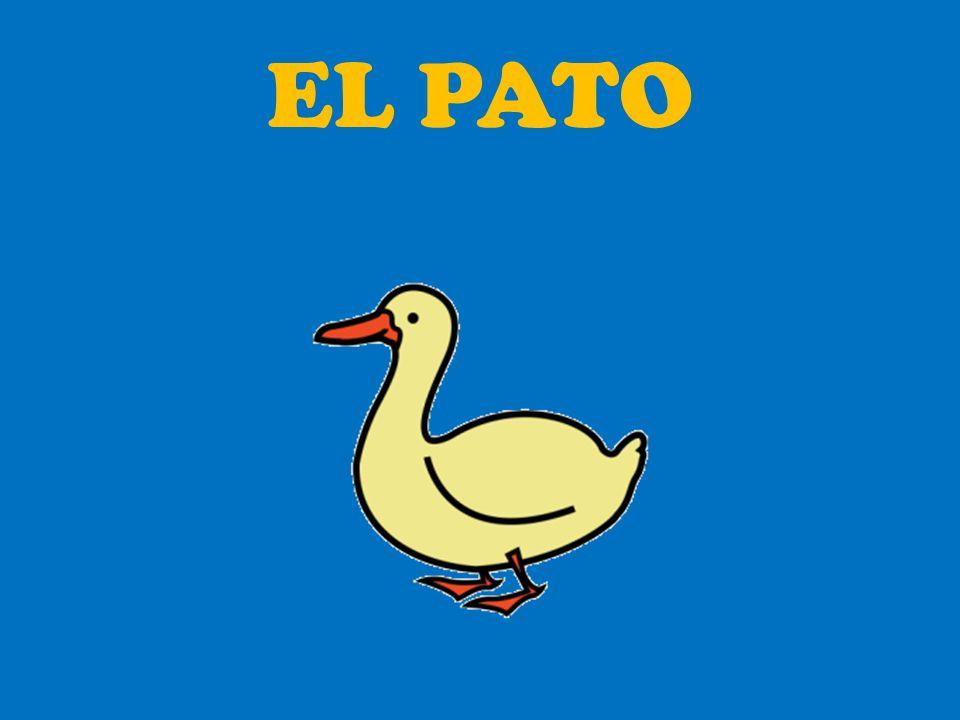Pedro salió al...