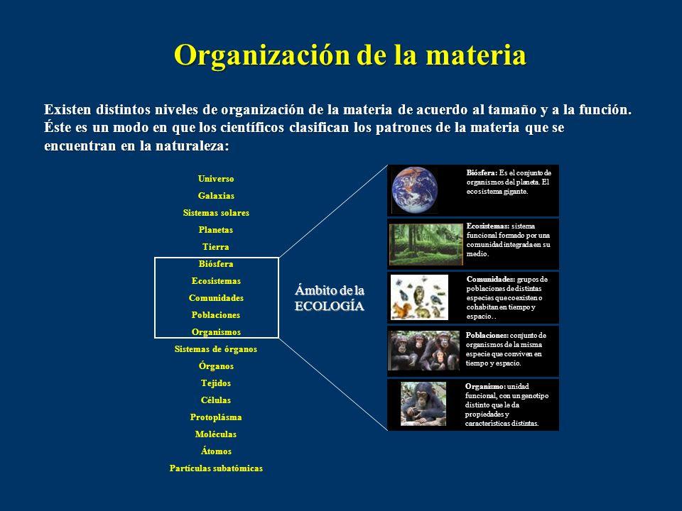 El ambiente es un término amplio que incluye todas las condiciones y factores externos (vivientes y no vivientes) que le afectan a cualquier organismo