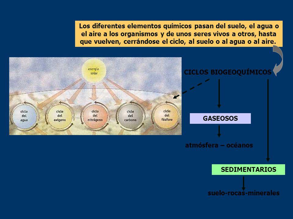 Ciclos biogeoquímicos Los elementos más importantes que forman parte de la materia viva están presentes en la atmósfera, hidrosfera y geosfera y son i