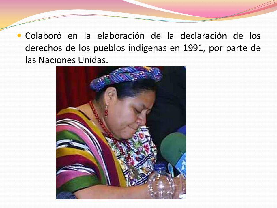 Colaboró en la elaboración de la declaración de los derechos de los pueblos indígenas en 1991, por parte de las Naciones Unidas.