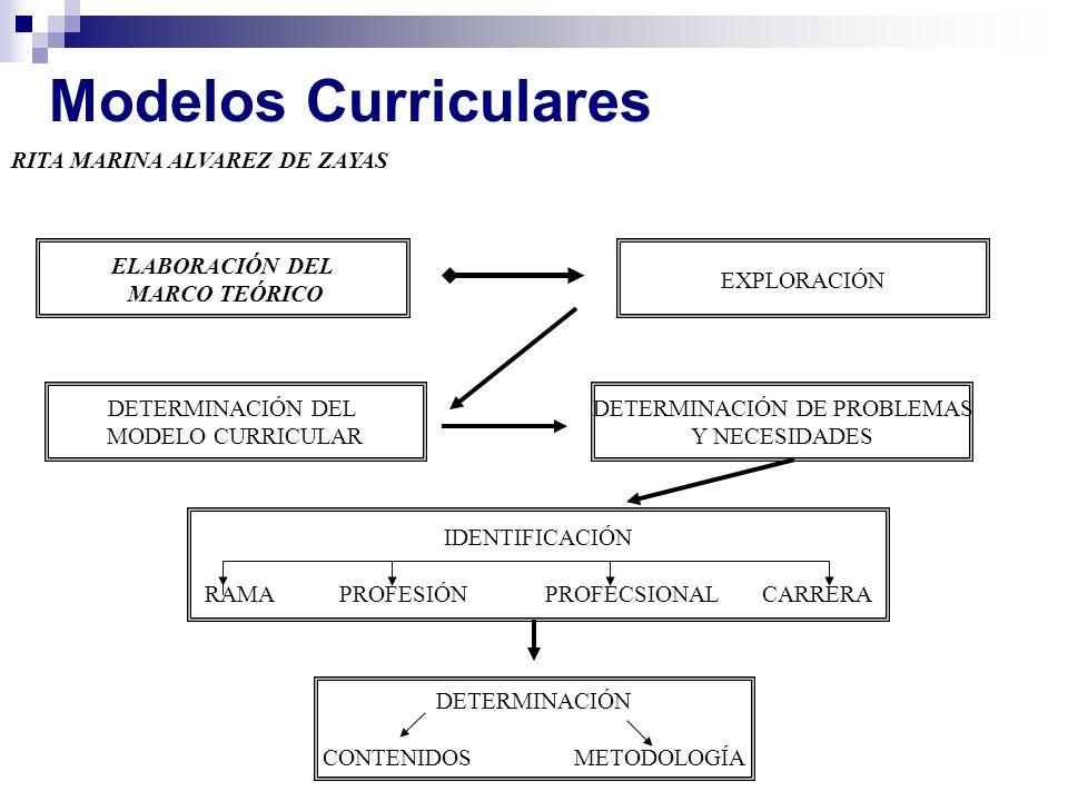 Modelos Curriculares RITA MARINA ALVAREZ DE ZAYAS ELABORACIÓN DEL MARCO TEÓRICO EXPLORACIÓN DETERMINACIÓN DE PROBLEMAS Y NECESIDADES DETERMINACIÓN DEL