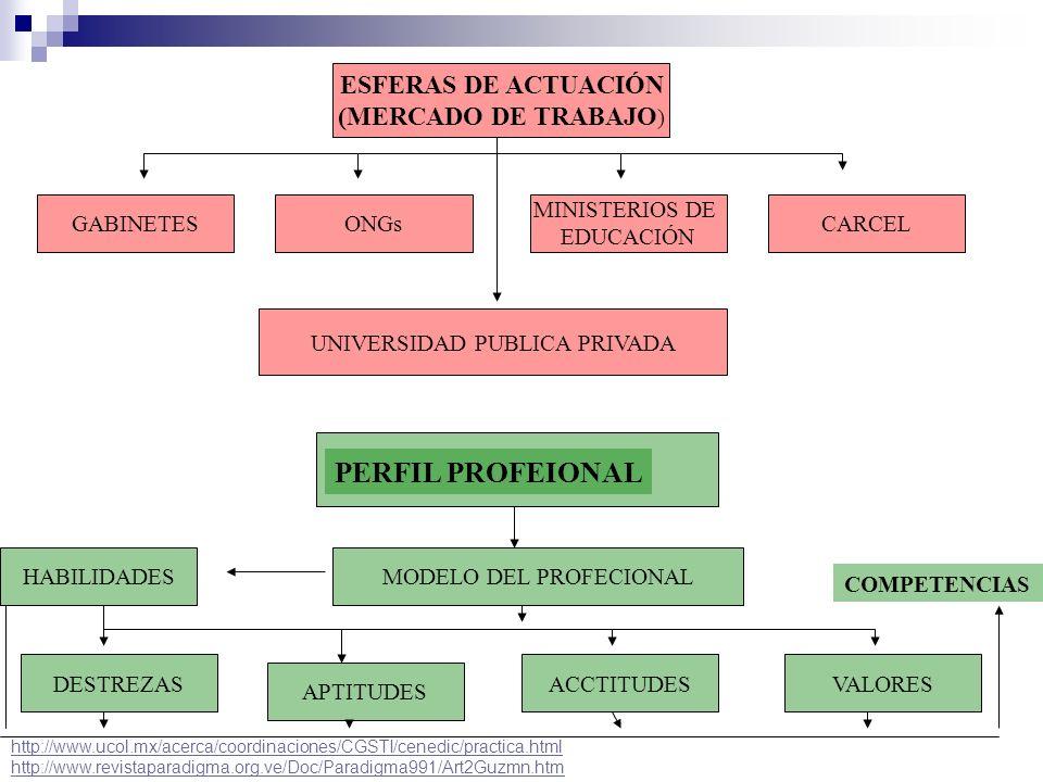 ESFERAS DE ACTUACIÓN (MERCADO DE TRABAJO ) CARCEL MINISTERIOS DE EDUCACIÓN ONGsGABINETES UNIVERSIDAD PUBLICA PRIVADA PERFIL PROFEIONAL MODELO DEL PROF