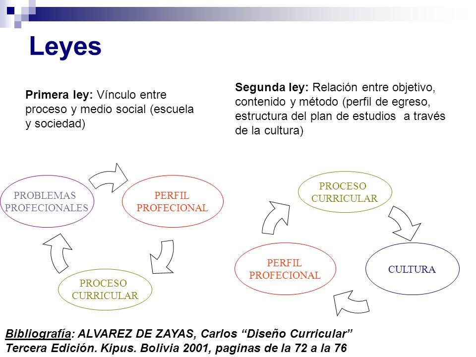 Leyes Primera ley: Vínculo entre proceso y medio social (escuela y sociedad) Segunda ley: Relación entre objetivo, contenido y método (perfil de egres