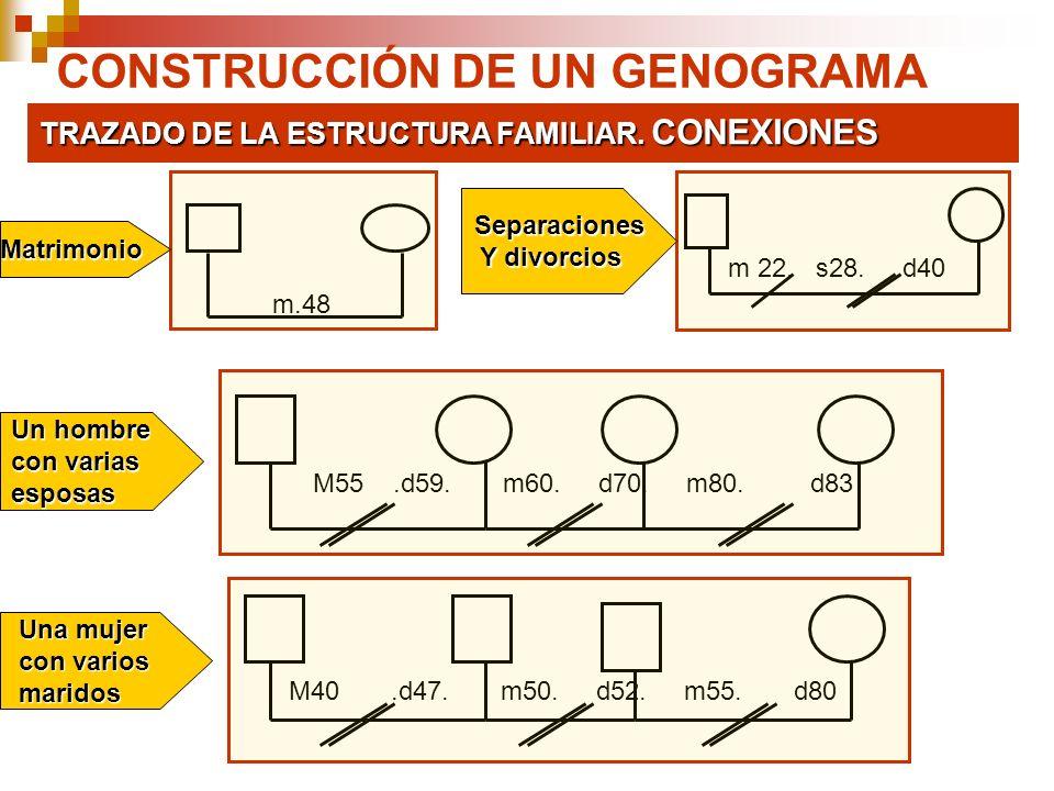 CONSTRUCCIÓN DE UN GENOGRAMA TRAZADO DE LA ESTRUCTURA FAMILIAR. CONEXIONES m.48 m 22. s28. d40 M55.d59. m60. d70. m80. d83M40.d47. m50. d52. m55. d80