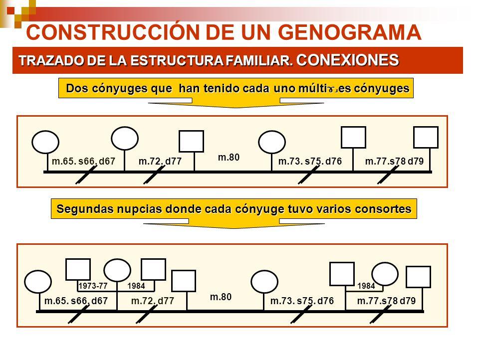 CONSTRUCCIÓN DE UN GENOGRAMA TRAZADO DE LA ESTRUCTURA FAMILIAR. CONEXIONES m.65. s66. d67m.72. d77 m.80 m.73. s75. d76m.77.s78 d79 m.72. d77m.65. s66.