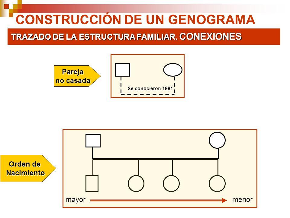 CONSTRUCCIÓN DE UN GENOGRAMA TRAZADO DE LA ESTRUCTURA FAMILIAR. CONEXIONES Se conocieron 1981 Pareja no casada Orden de Nacimiento Nacimiento mayormen
