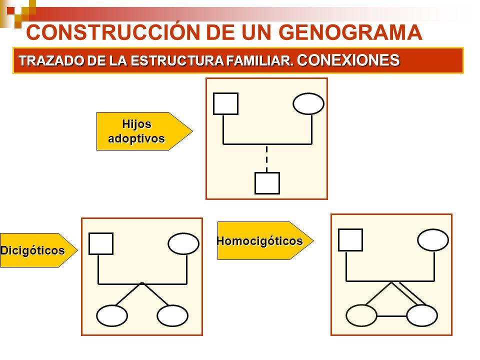 CONSTRUCCIÓN DE UN GENOGRAMA TRAZADO DE LA ESTRUCTURA FAMILIAR. CONEXIONES Dicigóticos Homocigóticos Hijosadoptivos