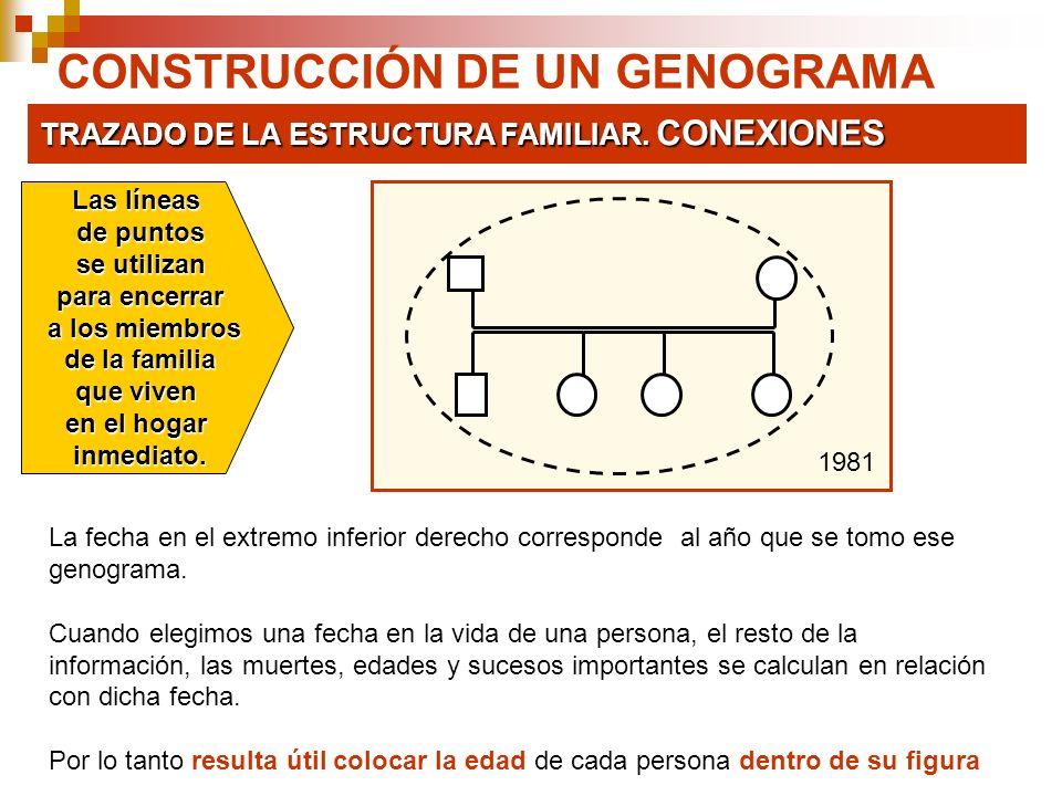 CONSTRUCCIÓN DE UN GENOGRAMA TRAZADO DE LA ESTRUCTURA FAMILIAR. CONEXIONES Las líneas de puntos se utilizan se utilizan para encerrar a los miembros a