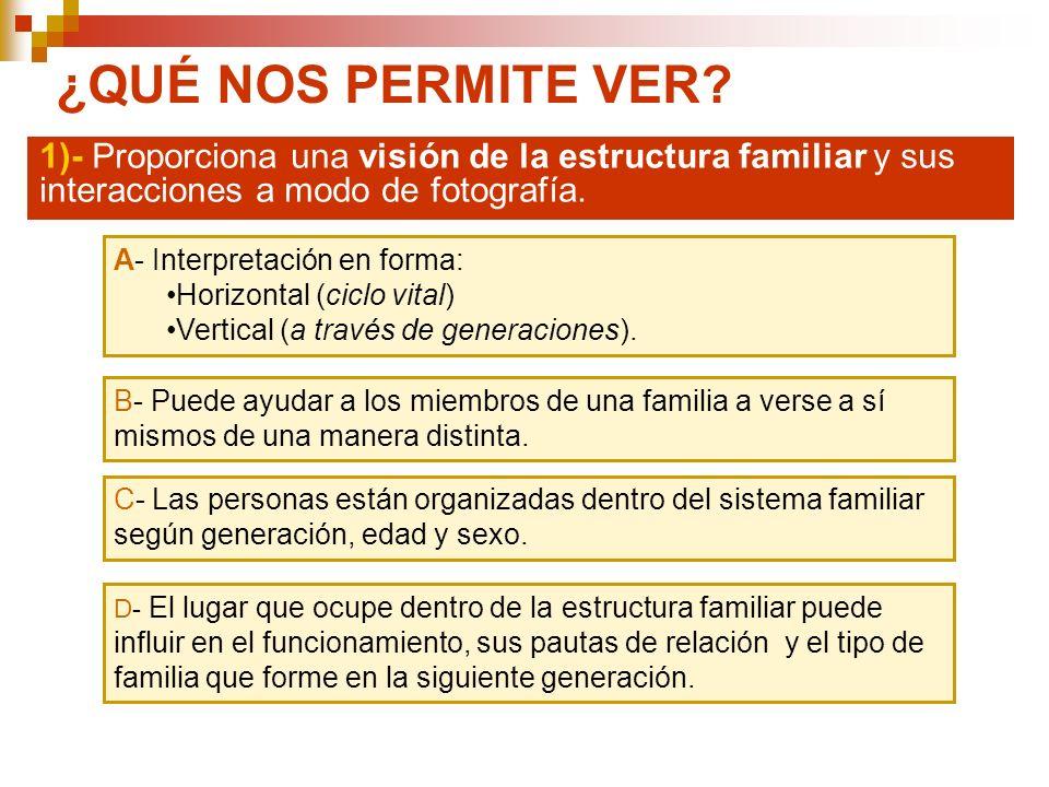 ¿QUÉ NOS PERMITE VER? 1)- Proporciona una visión de la estructura familiar y sus interacciones a modo de fotografía. A- Interpretación en forma: Horiz