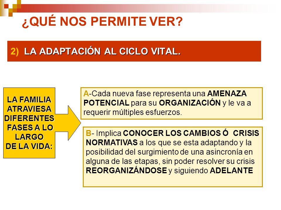 LA ADAPTACIÓN AL CICLO VITAL. 2) LA ADAPTACIÓN AL CICLO VITAL. ¿QUÉ NOS PERMITE VER? A-Cada nueva fase representa una AMENAZA POTENCIAL para su ORGANI