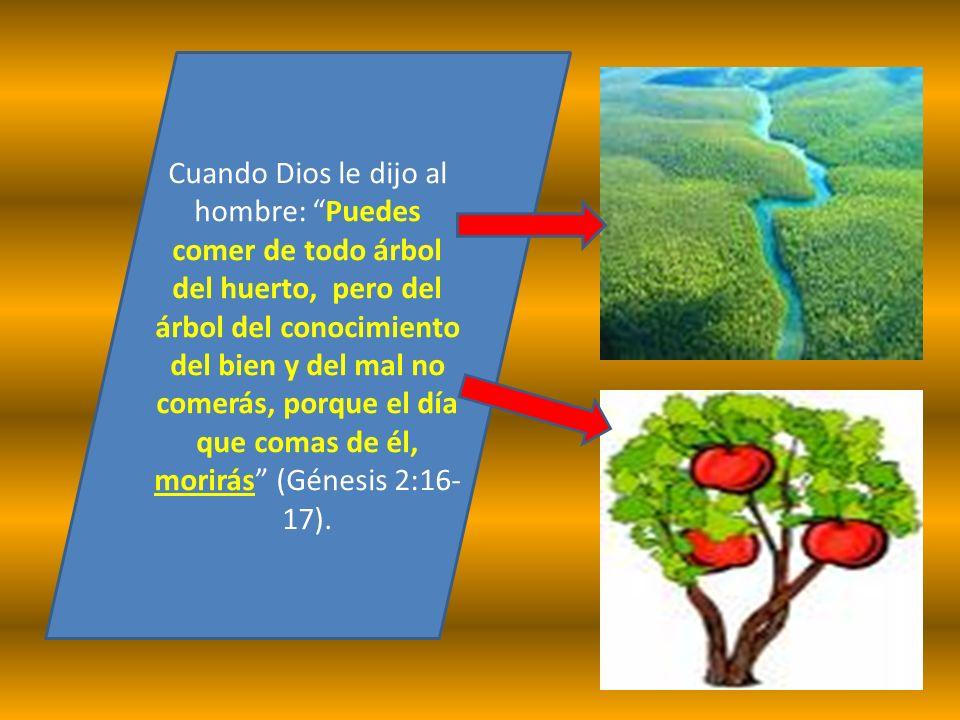 Cuando Dios le dijo al hombre: Puedes comer de todo árbol del huerto, pero del árbol del conocimiento del bien y del mal no comerás, porque el día que