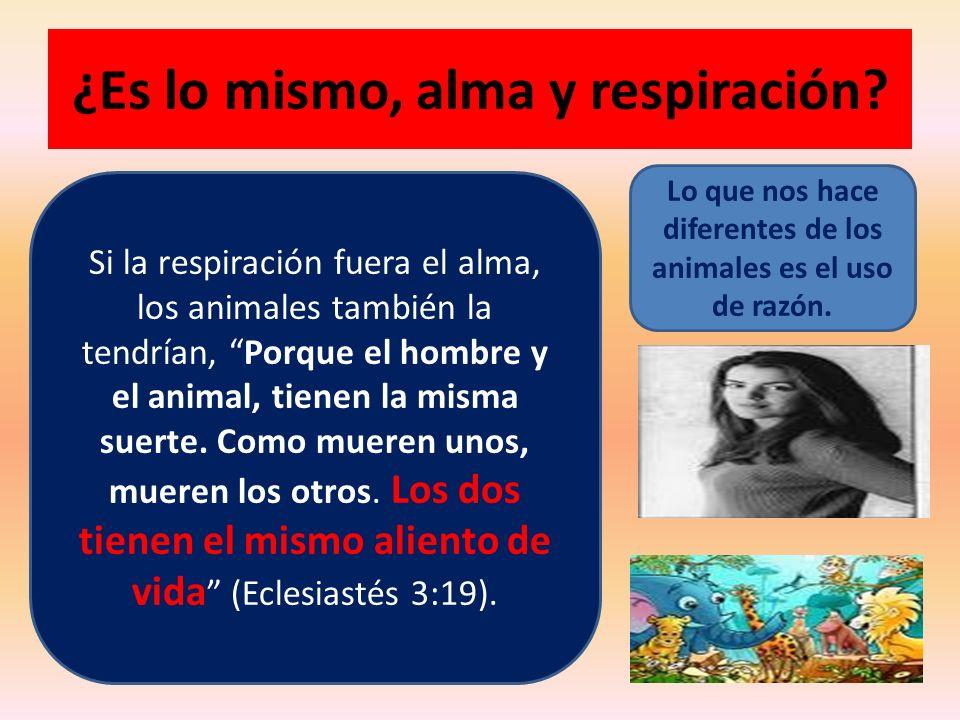 ¿Es lo mismo, alma y respiración? Si la respiración fuera el alma, los animales también la tendrían, Porque el hombre y el animal, tienen la misma sue