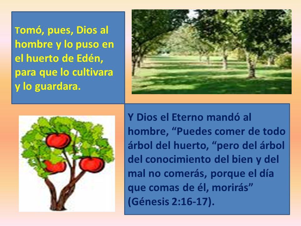 T omó, pues, Dios al hombre y lo puso en el huerto de Edén, para que lo cultivara y lo guardara. Y Dios el Eterno mandó al hombre, Puedes comer de tod