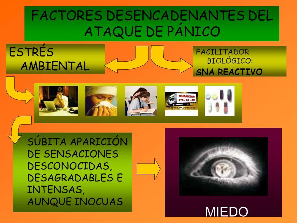 FACTORES DESENCADENANTES DEL ATAQUE DE PÁNICO SÚBITA APARICIÓN DE SENSACIONES DESCONOCIDAS, DESAGRADABLES E INTENSAS, AUNQUE INOCUAS MIEDO ESTRÉS AMBIENTAL FACILITADOR BIOLÓGICO: SNA REACTIVO