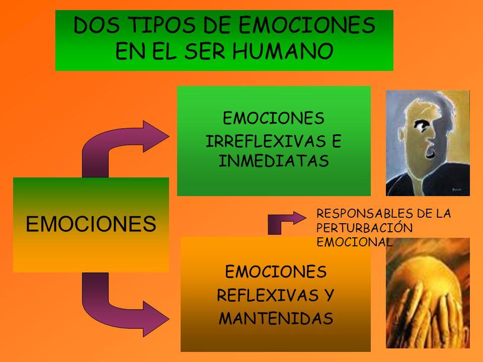 EMOCIONES DOS TIPOS DE EMOCIONES EN EL SER HUMANO EMOCIONES REFLEXIVAS Y MANTENIDAS EMOCIONES IRREFLEXIVAS E INMEDIATAS RESPONSABLES DE LA PERTURBACIÓN EMOCIONAL