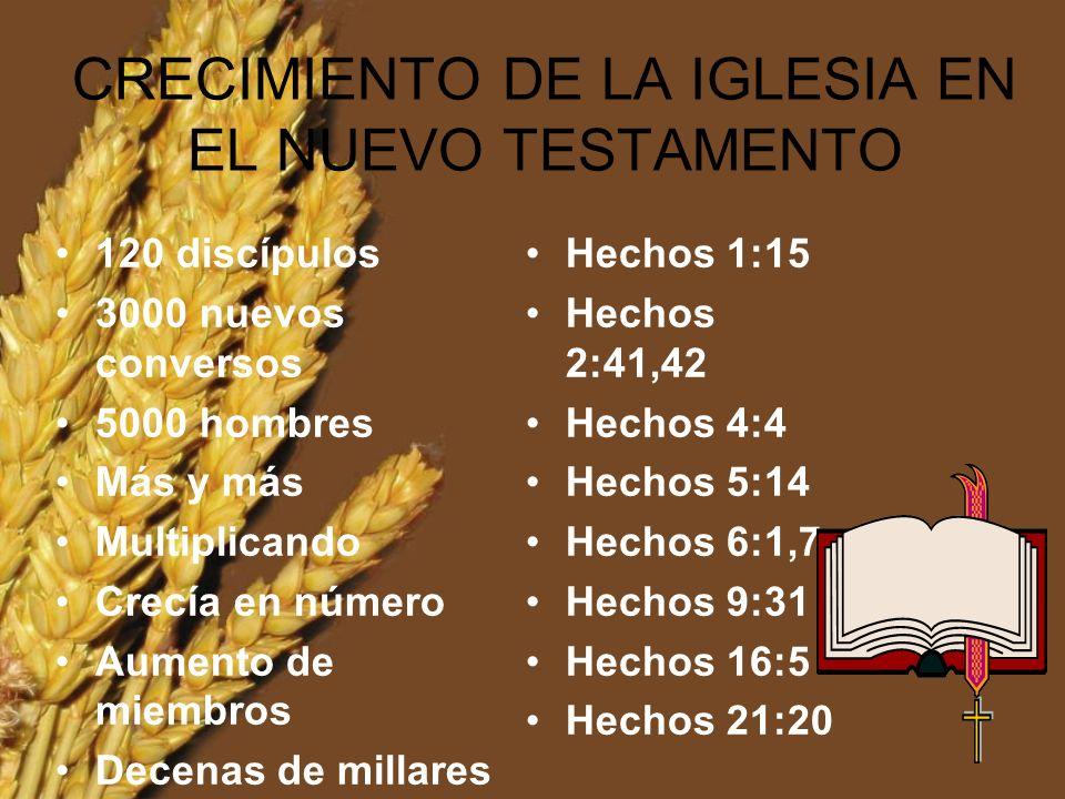 Cualquier pastor que no esté adiestrando a sus miembros para el ministerio, debe ser despedido Burrill 2005 El Capataz y 6 ociosos.