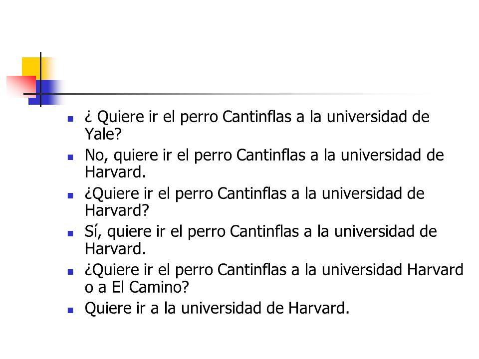 ¿ Quiere ir el perro Cantinflas a la universidad de Yale.